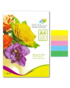 Бумага цветная А4 100 листов, 80 гр/м2, пастель, спектр цвет - радужный пакет, 5х20, IT 82
