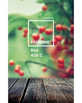 Тетрадь А4 144 л., твердый переплет, в клетку, пластиковая окладинка «Pantone Red» ТМ YES