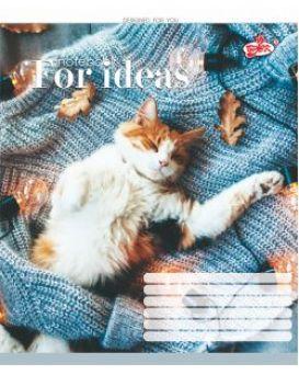 Тетрадь 12 л., в клетку Brisk «Теплые коты»