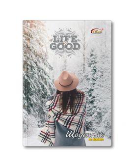 Дневник Gold Brisk «Зима» №72844