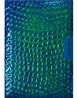 Дневник школьный 173 х 246 мм, 48 л., обложка кожзам
