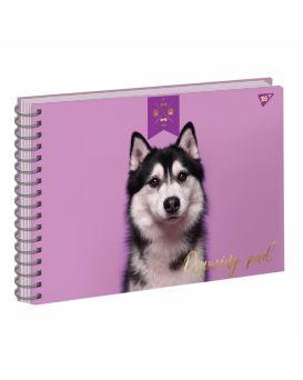 Альбом для рисования на спирали А4 20 л. «ELEGANT DOG» фольга золото + софт тач + УФ-выбор., ТМ YES