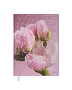 Дневник датированный 2022 год, A5 «POSH» розовый
